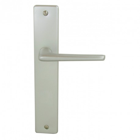 Ensemble/Plaque SAMOENS Aluminium Argent Sans Trou 195